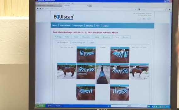 EQUIscan Online Plattform